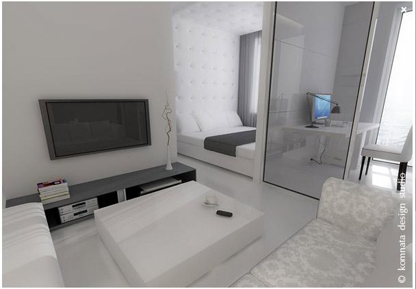 Дизайн квартир фото маленьких однокомнатных квартир